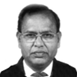 P. Narsing Rao